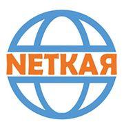 NetKar cheapest Website design