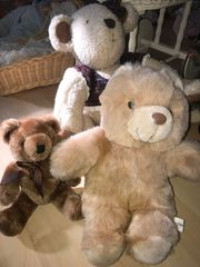 Drei Bären weich