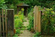 Garten Gartengrundstück Schrebergarten Waldgrundstück