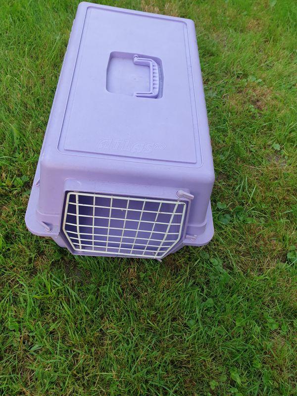 Katzentransportbox Kleintier Transportbox Hundebox