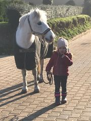Ponygruppe für die Kleinsten