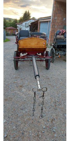 neuwertige Wagonette in rot: Kleinanzeigen aus Fränkisch-Crumbach - Rubrik Zubehör Reit-/Pferdesport