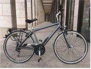 Pegasus hochwertiges Alu-Fahrrad Cityrad wie