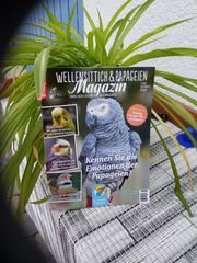 Wellensittich und Papageien Magazin