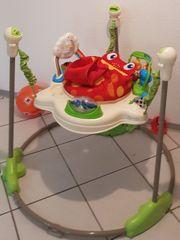 Fisher-Price Rainforest Jumperoo Baby Hopser