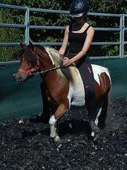 3 Ponys 4 - 9 Jahre