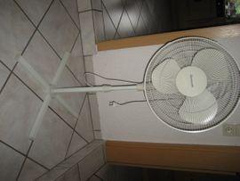Leistungsstarker Standventilator Ventilator Oszillierend 3-stufig: Kleinanzeigen aus Birkenheide Feuerberg - Rubrik Öfen, Heizung, Klimageräte