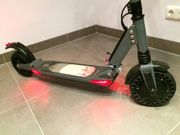 E-Scooter eFluX Lite Two