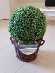 Buchsbaumkugel Deko neu Durchm 30