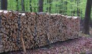 Brennholz Kaminholz trocken und ofenfertig