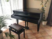 Bechstein Flügel Klavier