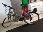 Fahrrad bronze RH 48