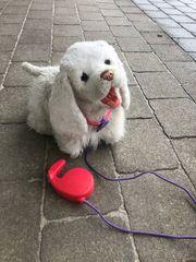 GoGo Hund von Furreal