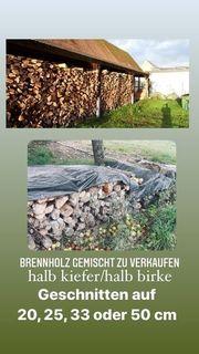 Kiefer Birke gemischt Kaminholz Brennholz