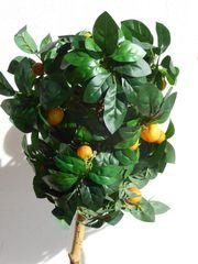 2 Deko Orangenbäumchen Höhe 110