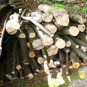 Brennholz Abholung in Stuttgart Heslach