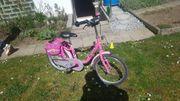 PUCKY Fahrrad für Mädchen
