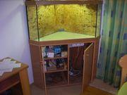 Eckaquarium mit Unterschrank mit eingebauter