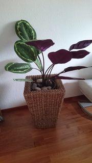 Kunstpflanze mit Rattan Übertopf