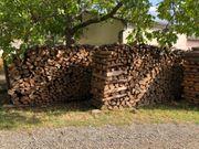 Brennholz Kiefer trocken mehrere Jahre