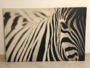 Ikea Zebra Leinwand
