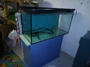 aquarium gebraucht