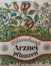 DDR Kartenspiel Wildwachsende Arzneipflanzen Verlag