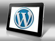 WordPress Standard Installation professionell installieren