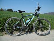 E-Bike REX Alu-MTB Twentyniner 29