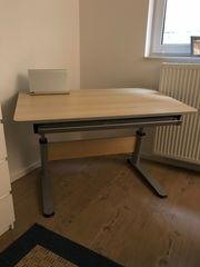 PAIDI Schreibtisch-Kombination Falko