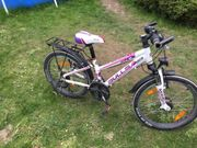Bulls Kinderrad zu verkaufen