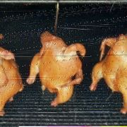 Kassler Hähnchen 1 2 kg
