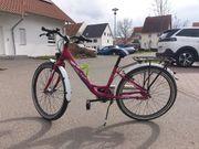 Falter Kinderrad 24Zoll 130-160cm