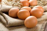 M - XL Eier von glücklichen