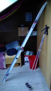 Langlauf-Skier aus Haushaltsauflösung