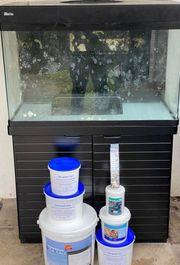Meerwasseraquarium Red Max 250 L