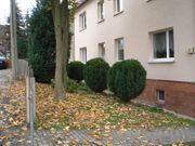 Zweiraumwohnung in Zwickau Sachs - Ruhe