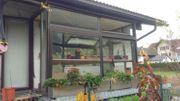 Wintergarten-Anlehngewächshaus