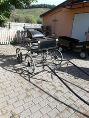 Kutsche Buggy für Pony