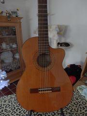 Ortega Guitars RCE300CT Handmade in