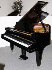 Klavier Flügel Bechstein 203 cm