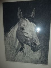 Wandbild Pferdekopf Radierung signiert