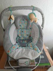 Ingenuity Babywippe