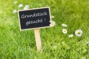 Suche Grundstück Feldkirch Nofels Bangs