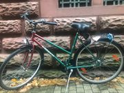 Damen und Herren Fahrrad mit