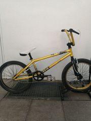 BMX B Twin WIPE500