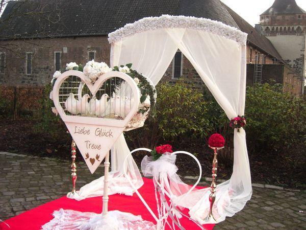 Güvercin Weiße Hochzeitstauben Düsseldorf-Köln-Mönchengladbach-Leverkusen-Mettmann-Solingen