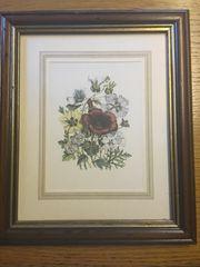 Bilder mit Blumenmotiven