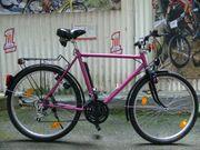 Herren - Fahrrad mit 18 Gang