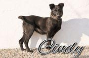 Cindy kämpft gegen Vorurteile